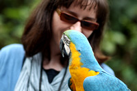 Hainan - Elina with Two Macaws