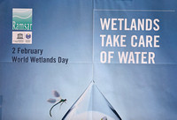 Mai Po - World Wetlands Day Poster