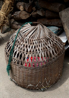 Durable Basketry