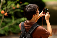 Singapore - Cheng Photographs a Sunbird in the National Botanic Gardens