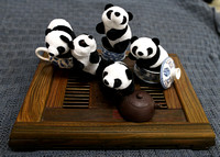 Miniature Panda Herd